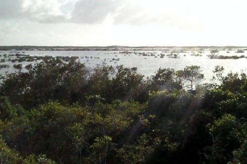 Mayaguana_island3