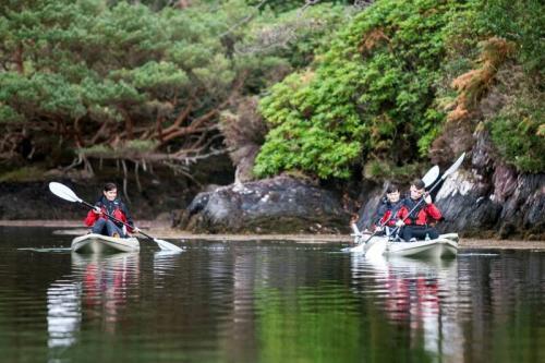 Motorised Kayaking in Sneem